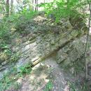 Biesak - Białogon Reserve